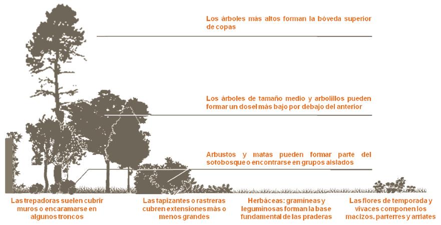 Nicho estructural - Sonido Verde Urbano